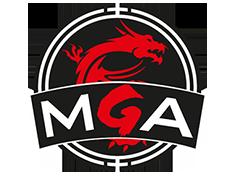MGA2015风暴英雄总决赛